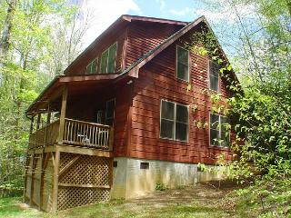 """""""AMONG THE LAURELS"""" Tucked Away W/Hot Tub. Memorial Day Weekend Available! - McLeansville vacation rentals"""