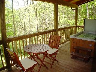 """AMONG THE LAURELS"" Tucked Away W/Hot Tub. Lower Summer Rates Available! - McLeansville vacation rentals"
