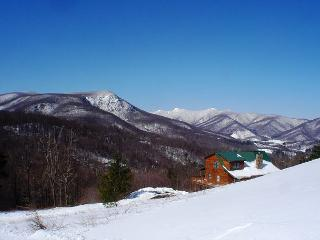 Spacious Cabin W/Long Range Views, Hot Tub, WiFi! Decorated For Christmas! - West Jefferson vacation rentals