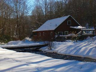 Cabin On Creek w/Hot Tub, WiFi & Air Hockey! - Todd vacation rentals