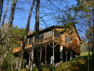 Cabin Overlooking Creek With WiFi, Close To Blue Ridge Parkway - Glendale Springs vacation rentals