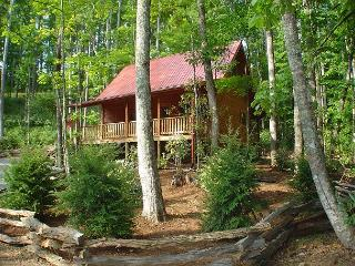 Log Cabin  with Hot Tub, WiFi, Creekside & Pet Friendly! Lower Summer Rates! - Todd vacation rentals