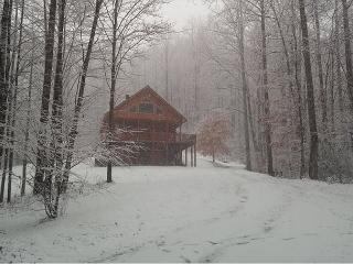 Log Home w/Hot Tub, Mtn Views, Fire Pit, WiFi! - Lansing vacation rentals