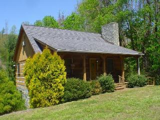 CHARMING LOG CABIN W/NEW RIVER ACCESS, HOT TUB, WIFI, FOOSBALL & PETS OK! - Warrensville vacation rentals