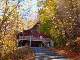 3 Level Log Cabin With Privacy, Hot Tub, WiFi & Near West Jefferson - West Jefferson vacation rentals