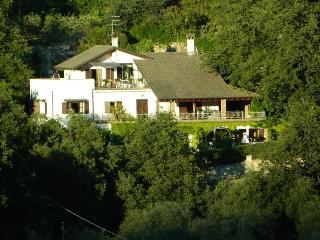 Casa Gialla in Villa Arcobaleno al mare Imperia - Imperia vacation rentals
