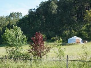 Nice Yurt with Housekeeping Included and Balcony - Chavenat vacation rentals