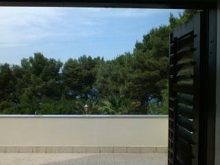 Apartment with big terrace - Jelsa vacation rentals