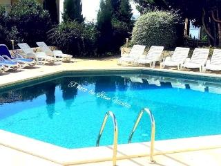Bayview Apartment with Pool - Cavtat vacation rentals