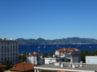 Super Sea View, 6 Guests, 5min walk Port Canto - Cannes vacation rentals