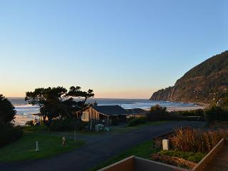 AVALON- SPECTACULAR PANORAMIC OCEAN & NEAHKAHNIE MOUNTAIN VIEWS!! - Nehalem vacation rentals