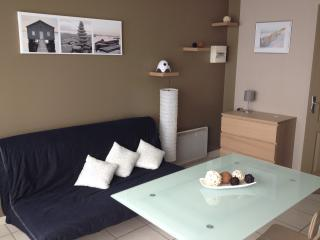 STUDIO 24m2 Confortable, Rénové, NANCY CENTRE - Nancy vacation rentals