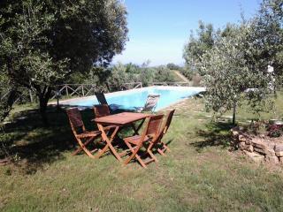 mare e colline in Maremma Toscana - Campagnatico vacation rentals