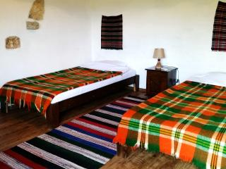 Double Room In A stone Build House - Balgarevo vacation rentals