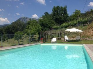 6 bedroom farmhouse in Tuscany with magnificent views, private pool, terrace and wi-fi available - Castiglione Di Garfagnana vacation rentals
