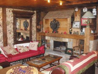 Chalet LA VORAZ - Chatel vacation rentals