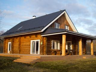 Humala Holiday Home with sauna and hot tub - Kohila vacation rentals