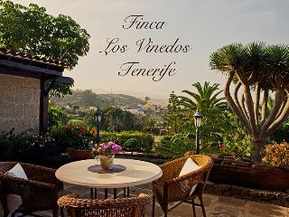 5 bedroom Finca with Deck in Tacoronte - Tacoronte vacation rentals
