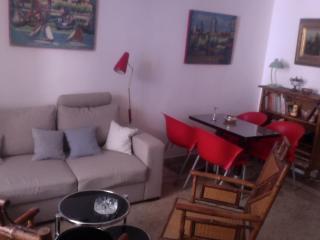 appartement dans un petit hôtel particulier - Arles vacation rentals