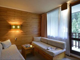 SUPERB SKI APARTMENT 3X2 for 6 IN PLAGNE BELLECOTE - Savoie vacation rentals