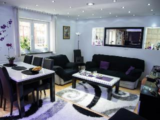Sarajevo comfortable apartment - Sarajevo vacation rentals