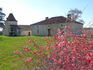 Bright Pouy-Roquelaure Farmhouse Barn rental with Central Heating - Pouy-Roquelaure vacation rentals