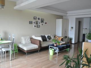 Nice Condo with A/C and Washing Machine - Chengdu vacation rentals
