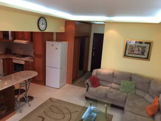 Yerevan 1BR Apartment on Tumanyan street - Yerevan vacation rentals