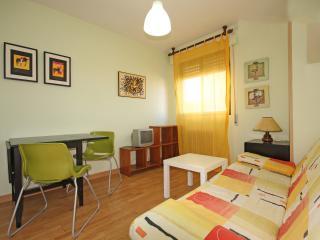 Salamanca Nice& Budget WIFI+BILLS INCLUDED - Salamanca vacation rentals