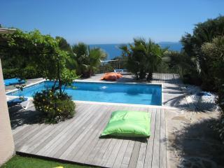 grande villa vue mer et piscine - Le Lavandou vacation rentals