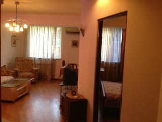 Yerevan Center One-Bedroom Apartment - Yerevan vacation rentals