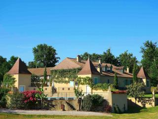 Large country house built in 1838 - Maubourguet vacation rentals
