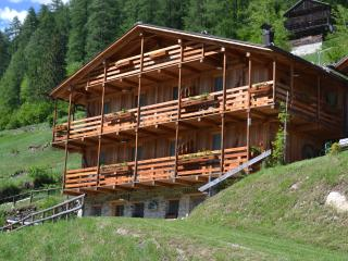 Nice Ski chalet with Television and Mountain Views - Rabbi vacation rentals
