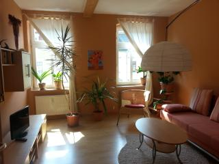 Nice 1 bedroom Condo in Dresden - Dresden vacation rentals