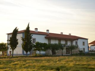 Charming Farmhouse Barn with Dishwasher and Garden in Castelo Branco - Castelo Branco vacation rentals