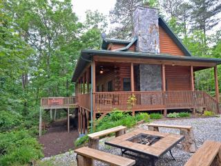 Forest Lake Cabin - Bryson City vacation rentals
