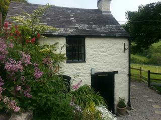 The Bothy, bijoux stone cottage with private wood-fired hot tub! - Tremeirchion vacation rentals