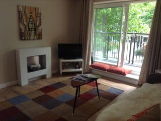 2 bed London apartment near O2 / ExCel sleeps 6 - London vacation rentals