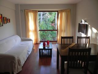 2 bedroom Apartment with Internet Access in San Carlos de Bariloche - San Carlos de Bariloche vacation rentals