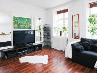 Luxurios and Cosy Apartment in the Heart of Copenhagen - 5517 - Copenhagen vacation rentals