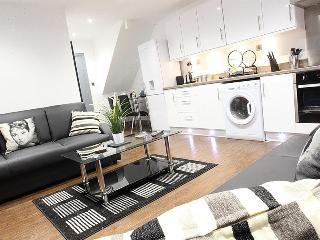 Northern Quarter Apartment 4 sleeps 14 - Manchester vacation rentals
