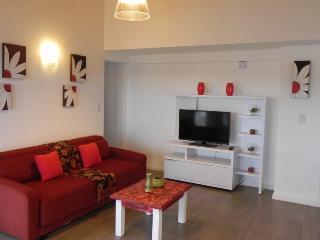 Nice Condo with Internet Access and Central Heating - San Carlos de Bariloche vacation rentals