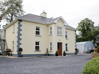 4 bedroom Farmhouse Barn with Satellite Or Cable TV in Longford - Longford vacation rentals