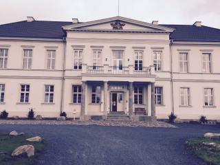 Nice House with Deck and Internet Access - Neubrandenburg vacation rentals
