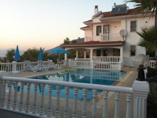 Mountain Breeze 3 Private Villa - Ovacik vacation rentals
