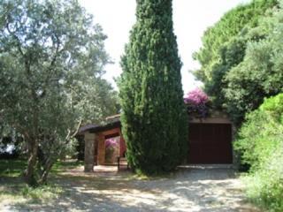 Villa Stella at Monte Argentario, Tuscany coast - Porto Santo Stefano vacation rentals