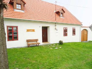 Lovely holiday home in South of CZ - Trebic vacation rentals