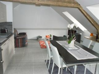LODGES du Mont Brule meublés 3* avec SPA Confort - La Ferriere Aux Etangs vacation rentals