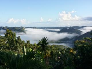 The Sanctuary - Lake View Mountain Home w/Wi-Fi - Utuado vacation rentals