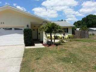 4 Bed Room 2 Car Gradge Single Family Home - Dunedin vacation rentals